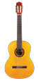 Protégé by Cordoba C1 Acoustic Electric Nylon Guitar