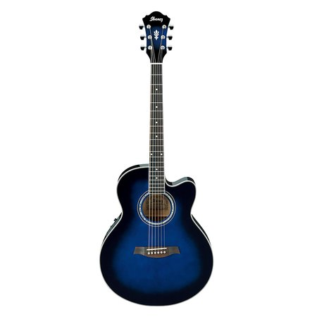Image for Ibanez AEL10E Cutaway Acoustic Electric Guitar